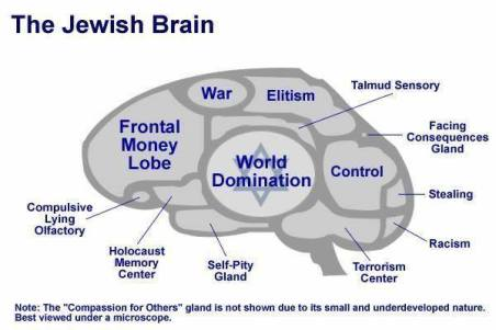 jew brains 21686258_336396500153143_6449968293322781110_n