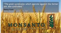 jew grain wheat monsanto GMO 24796552_10215430982111587_548392317549396154_n