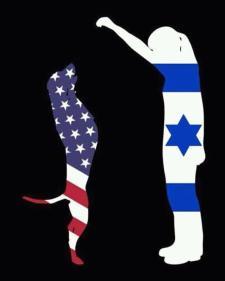 usa america is jew israel bitch 34036945_10155652139024077_5502712593556439040_n